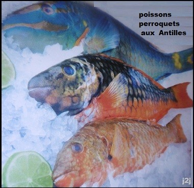 http://cuisine2jacques.c.u.pic.centerblog.net/6a853d6d.JPG