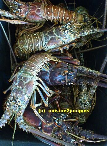 http://cuisine2jacques.c.u.pic.centerblog.net/e34ffb94.JPG